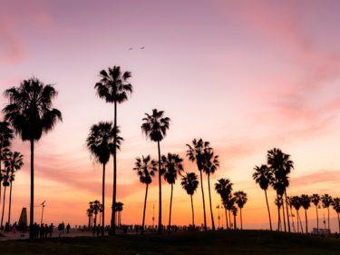 ロサンゼルス・ラスベガス一人旅の費用はどれくらい?移動費や宿泊費【アメリカ旅行】